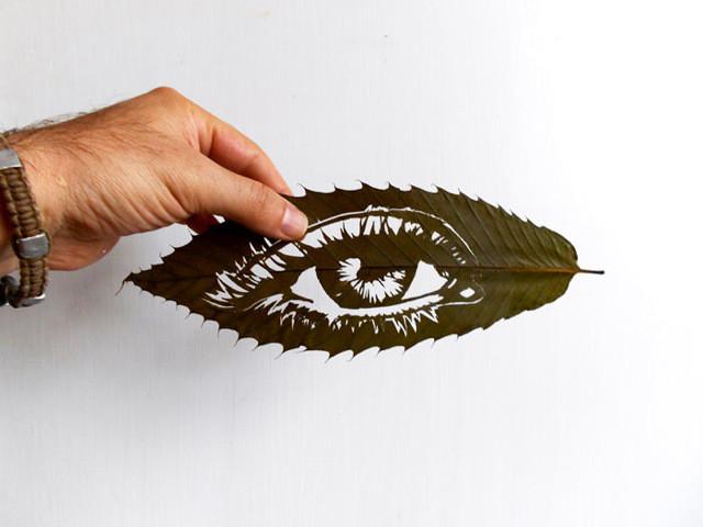 فن دقيق و معقد على أوراق الشجر المجففة