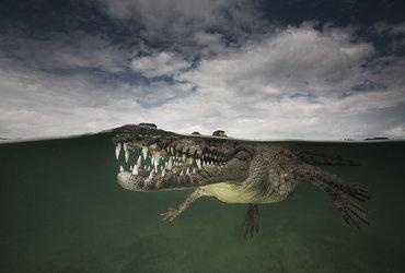 """ماتي سميث يلتقط صور مذهلة بعنوان"""" العالم الموازي"""""""