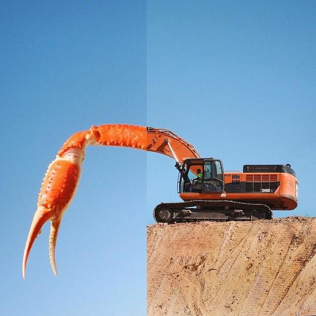 الفنان ستيفن ماكمينامي يدمج الصور ليحولها إلى صور فكاهية مميزة