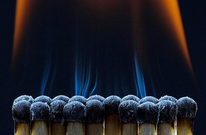 50 مثالا رائعا على التصوير الدقيق (Macro Photography)