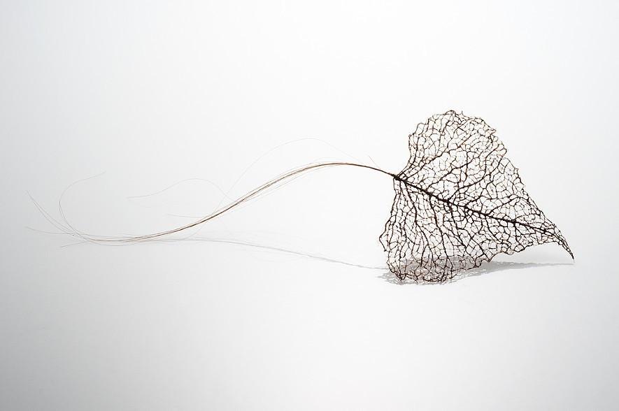 تشكيل أوراق الشجر باستخدام شعر الرأس