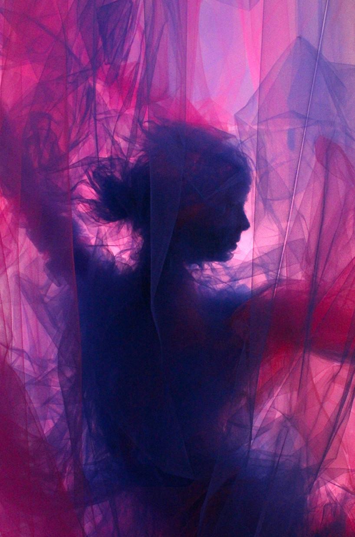 بينجامين شاين يبتكر لوحات من أقمشة التول الشفافة في