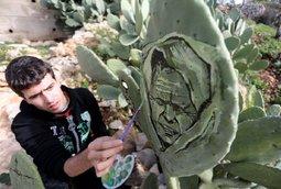 فنان فلسطيني يرسم لوحات فنية على جذوع نبات الصبر