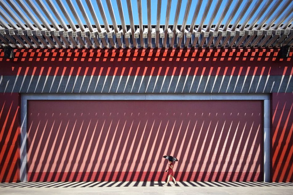 الصور الفائزة بالمسابقة العالمية للتصوير بالأيفون لعام ٢٠١٦